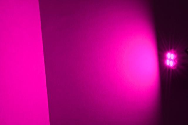 画像1: GOD ポジションバルブ ピンク 2個セット (1)